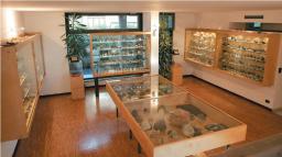 Museo Mineralogico di Vico Equense