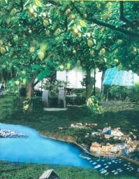 Le delizie del limone di Massa