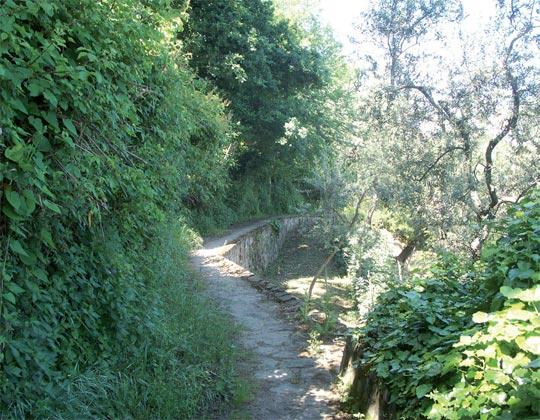 Via Gli Schisani